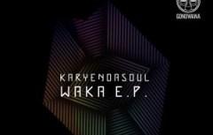 Karyendasoul - Foreign Feelings  (Original Mix)